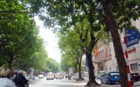 BÁN BUILDING TRẦN HƯNG ĐẠO, 438M, DOANH THU 1 TỶ/THÁNG, 340 TỶ.