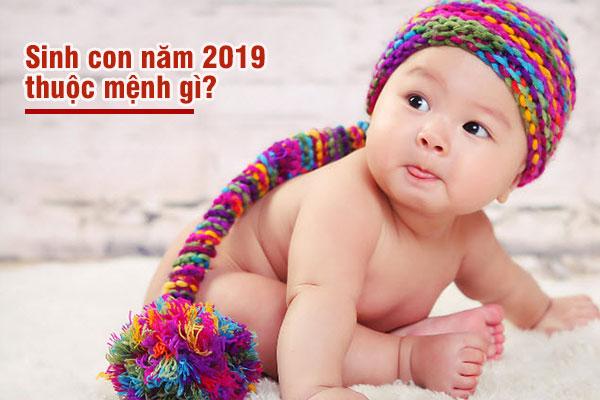 Giải đáp toàn bộ những điều về Năm 2019 là năm con gì ? Năm 2019 Mệnh gì?